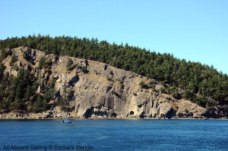 L88 Wave Walker at Monarch Head, Saturna Island