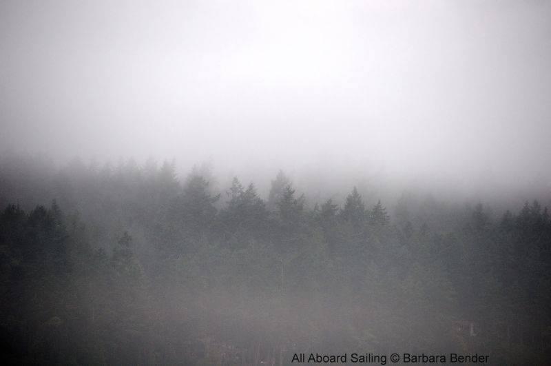 Morning fog lifts in San Juan Channel