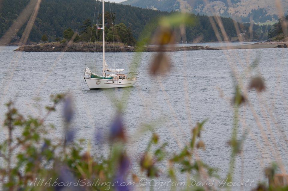 Peniel at anchor, Yellow island