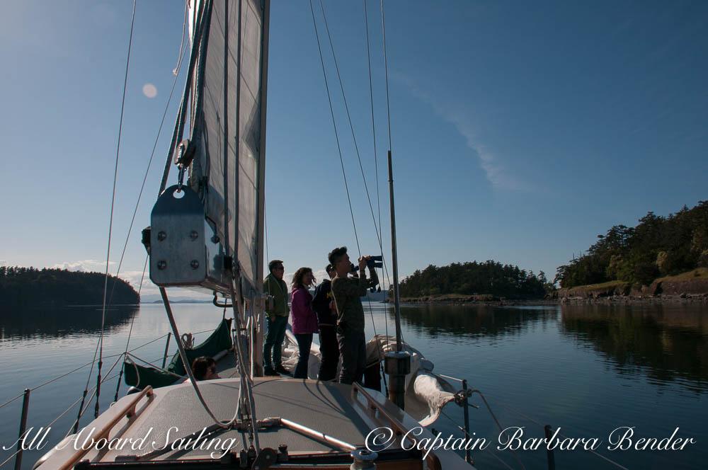 Sailing San Juan islands - What a view