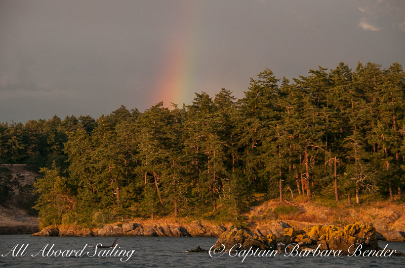 T73A1 under rainbow, Sentinel Island. Harbor seal hiding on Sentinel Rock