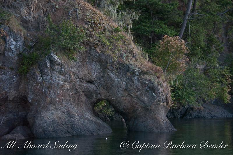 Elephant Rock, Speiden Island