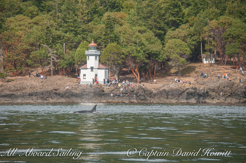 J19 Shachi Passes Lime Kiln Point Lighthouse