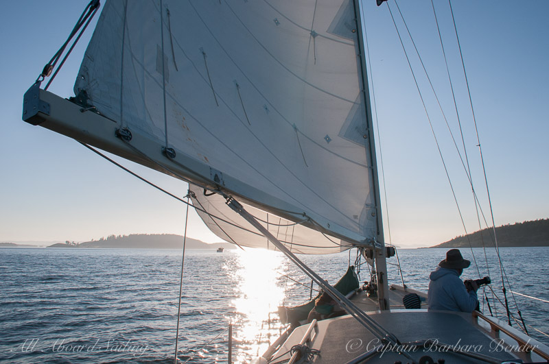 Sailing with transients