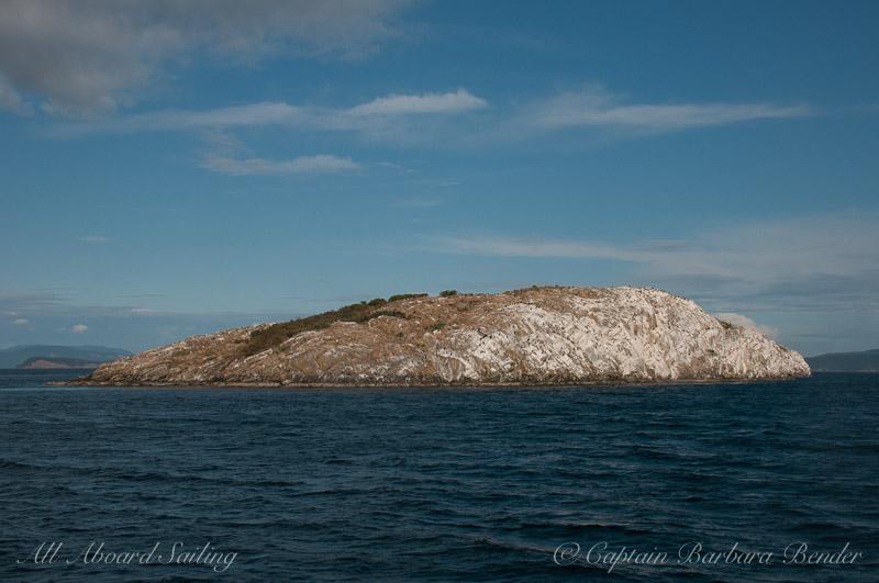 Mandarte Island