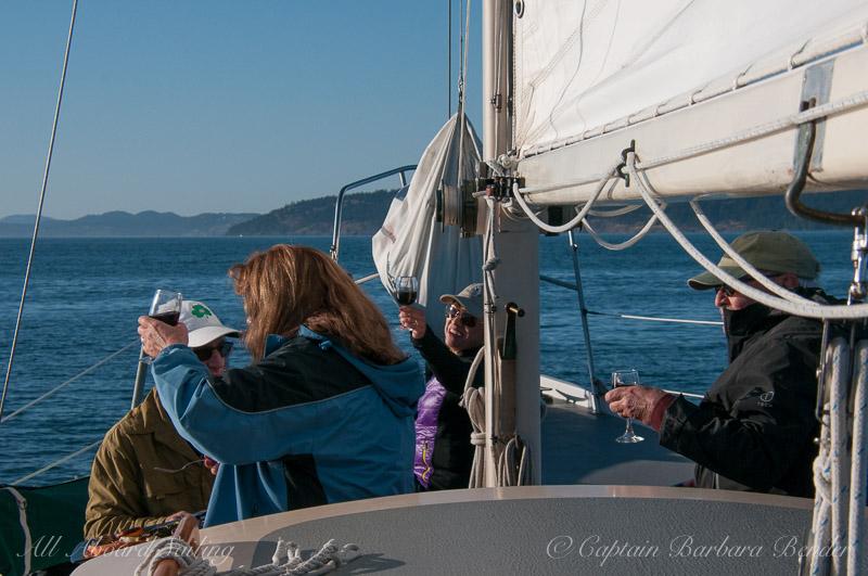 Whale watching sailing San Juan Islands