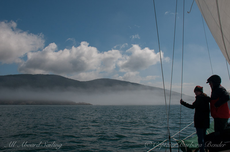 Sailing towards the fog to find orcas