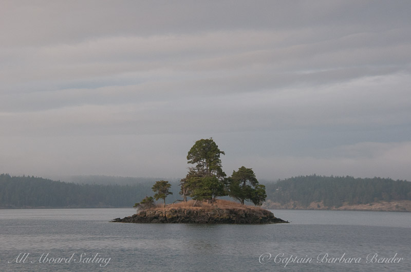 The little island off Turn Island