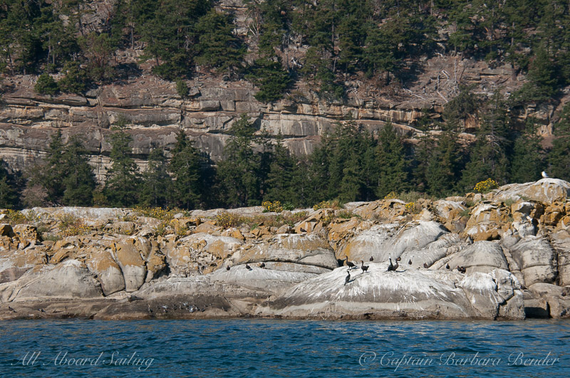 Java Rocks and Saturna Island