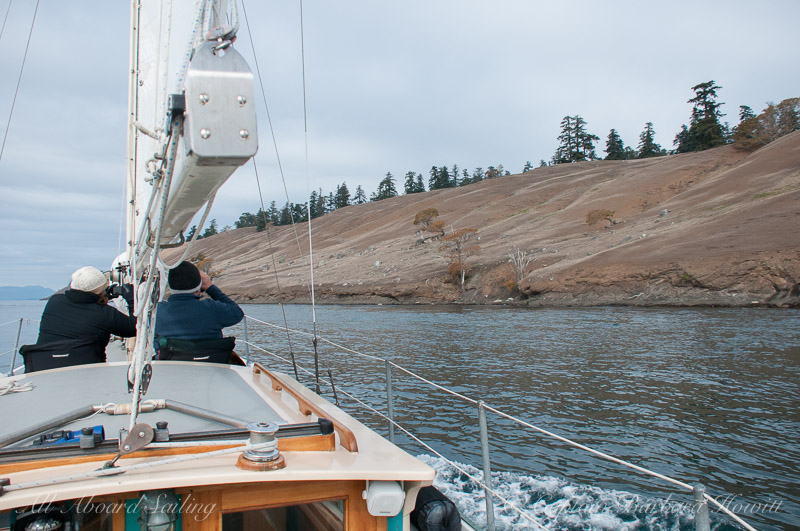 Sailing in Spieden Channel