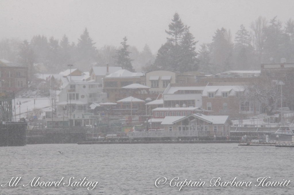 Friday Harbor in the snow