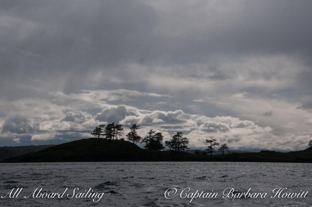 Spieden Island