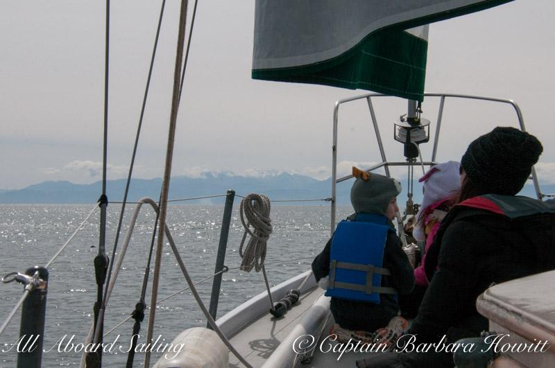 Scanning for Minke whales