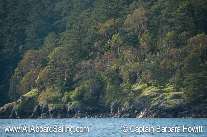 Evening light on Orcas Island, Harney Channel