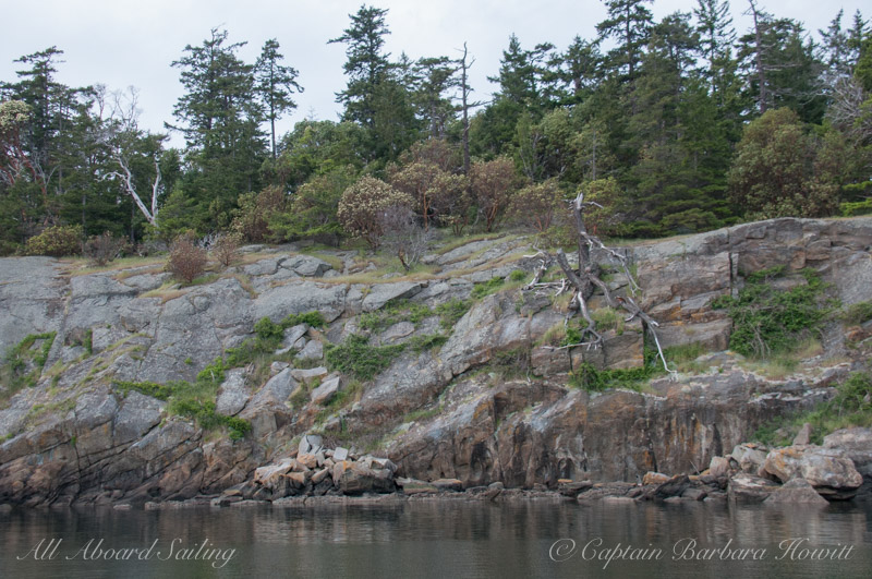 Skipjack Island