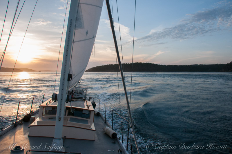 Sunset sailing while whale watching