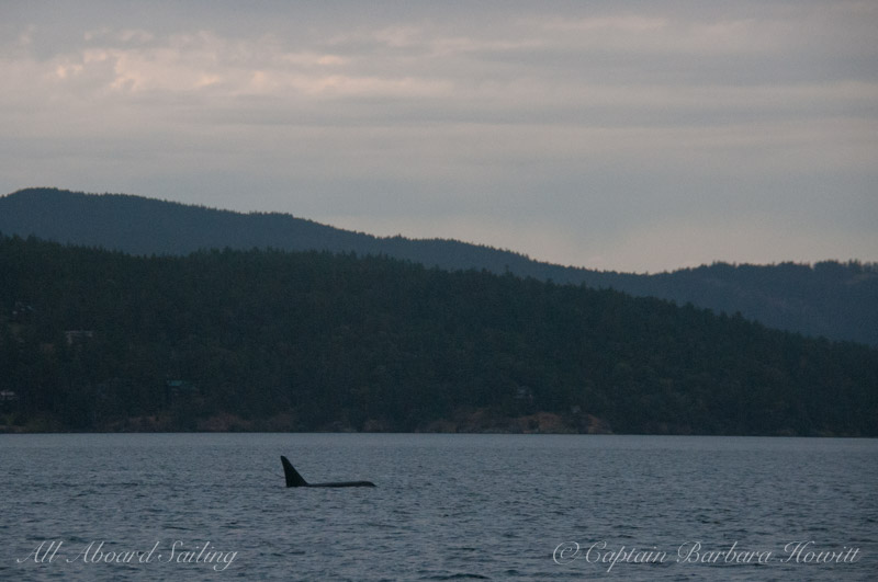 T2C1 with Orcas Island behind him