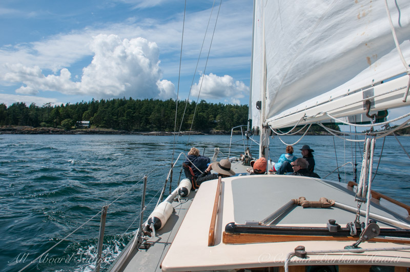 Drift sail on the flood