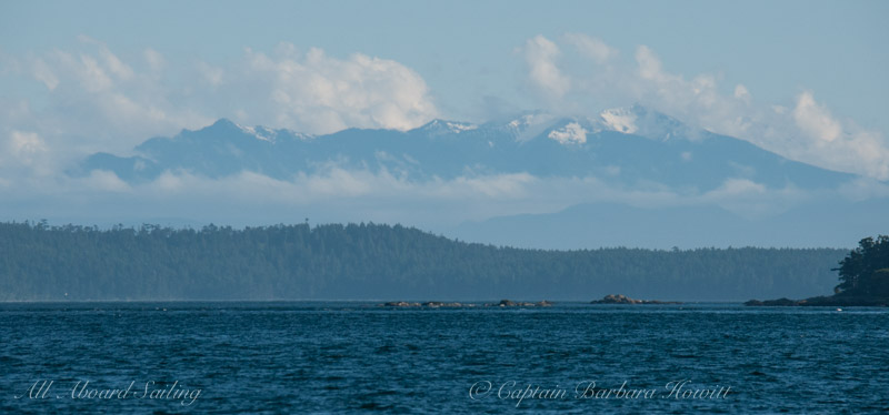 Olympic Mountains and harbor seals south of Turn Rock