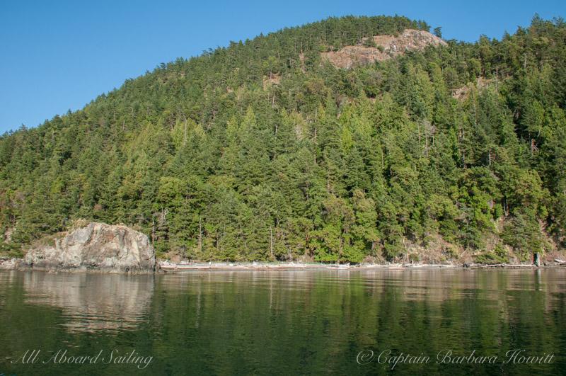 Orcas Island trees cape