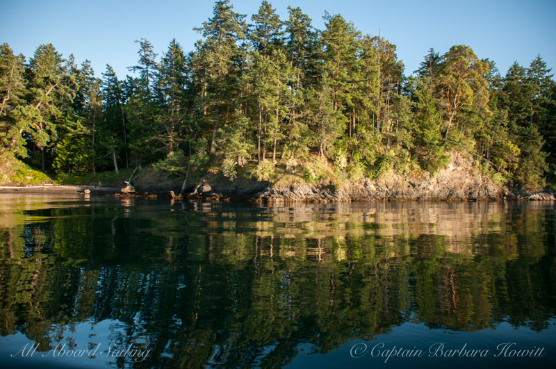 Shaw Island reflections