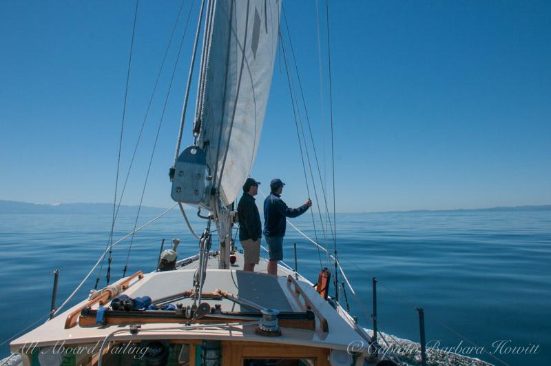 Minke whale watching aboard Peniel in paradise