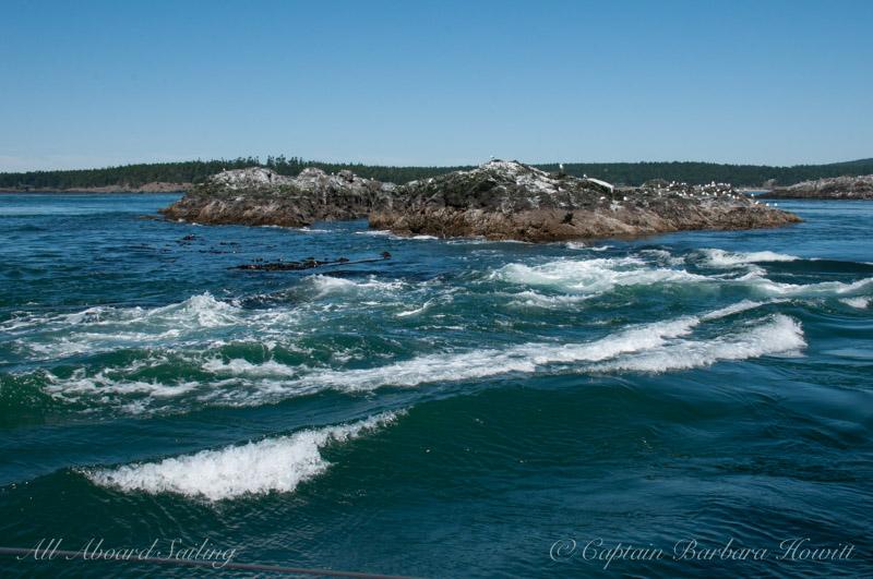 Crashing waves at Whale Rocks