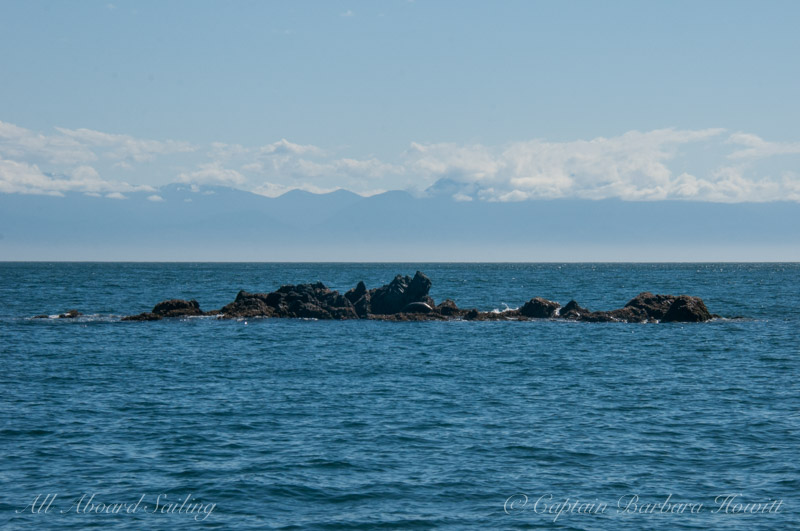 Rocks extending off Swirl Island