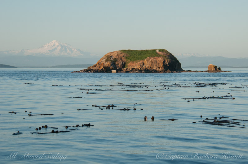 Mt Baker and Bare Island