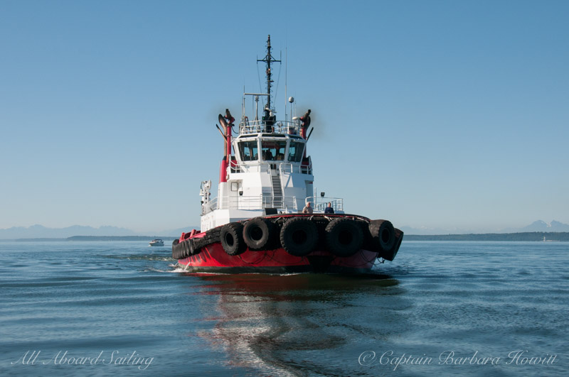 Tug boat stopped to whale watch