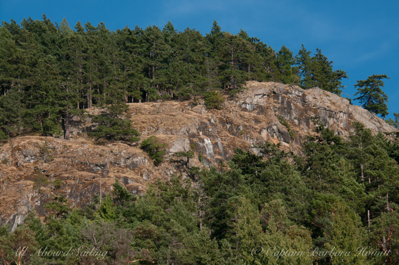 Cliff on Orcas Island