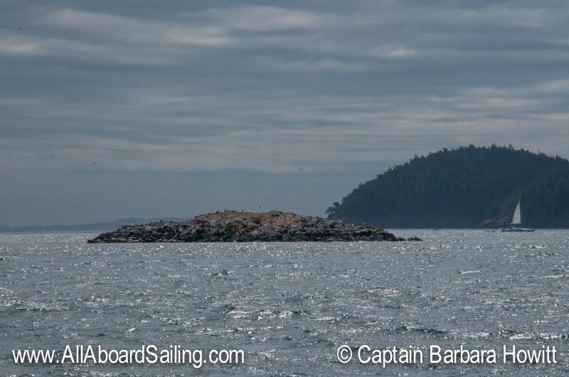 Pointer Island