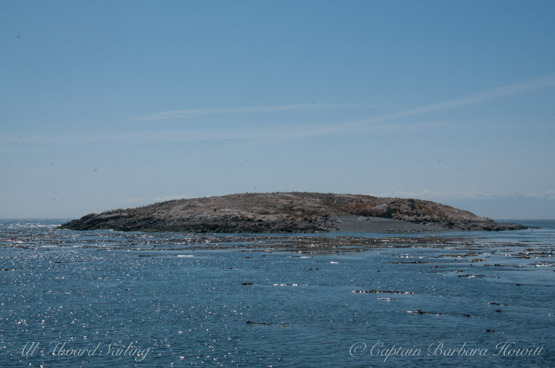 Goose Island, San Juan Channel