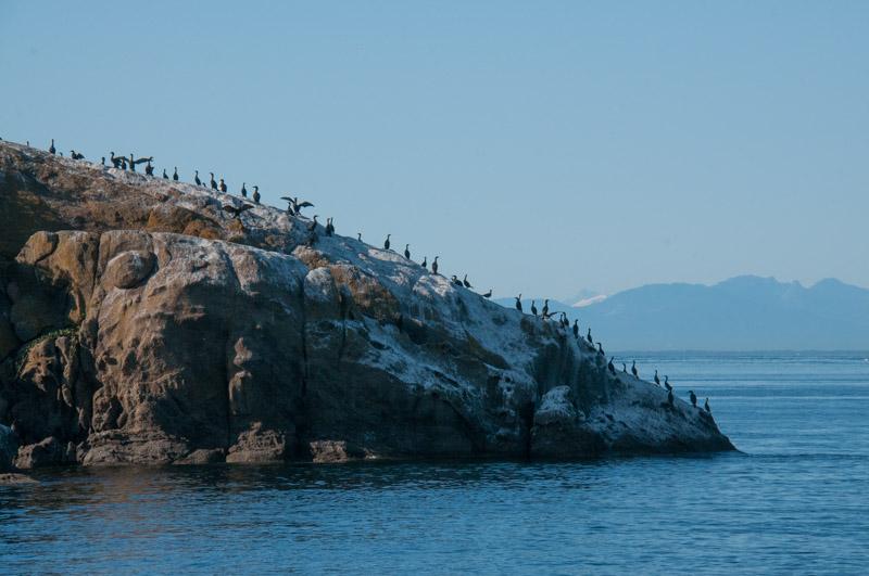 Bare Rock National Wildlife Refuge