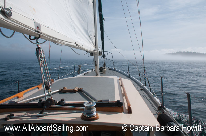 Day Sailing Charters in the San Juan Islands with All Aboard Sailing