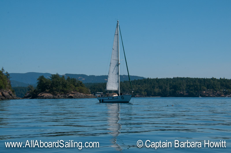 All Aboard Sailing in the San Juan islands