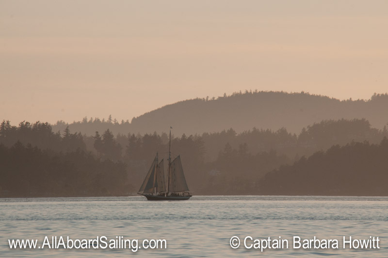 Spike Africa sails from Friday Harbor at sunset