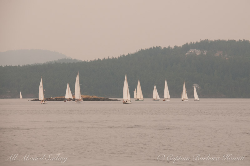 Wooden Sailboat Race from Deer Harbor, Orcas Island