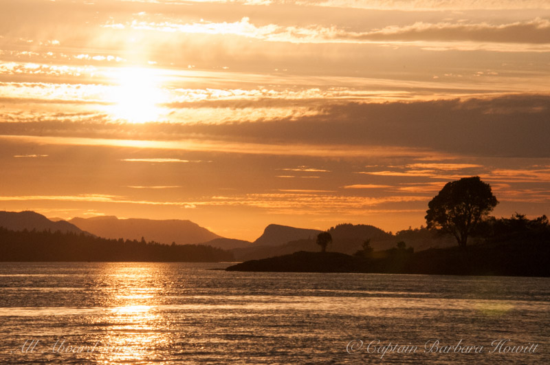 Sailing back to port at sunset