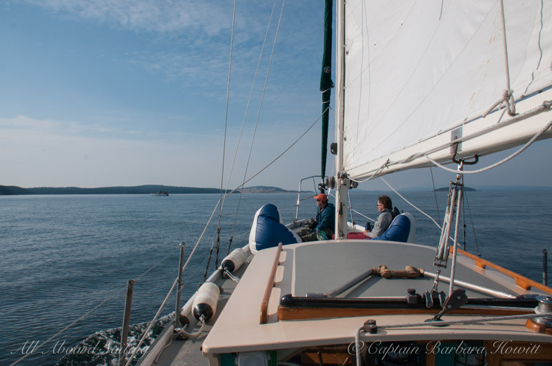 Sailing with whales in the San Juan Islands
