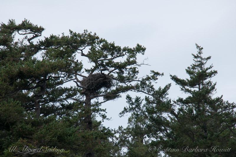 Eagle Nest Flattop Island